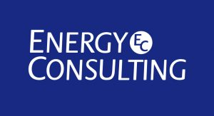 Energy Consulting Firm